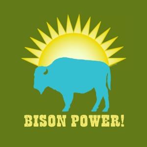BisonPower! - Green